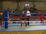 соревнования по кик-боксингу Италия