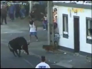 Безумные Игры с бешеным быком 3