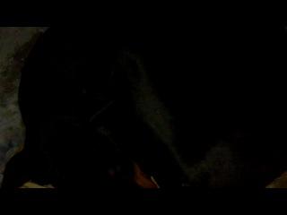«армия» под музыку Конец фильма - И вот стою я на плацу-песня из кинофильма Солдаты. Picrolla