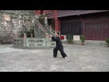 Мастер Ван Лин. Тайцзицюань: 24 формы стиля Ян