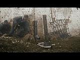 Вторая Мировая: Штурм Берлина в цвете (апрель - май 1945, кинохроника, уникальные кадры)