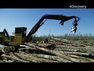 Лесоповал на болотах (4 серия)