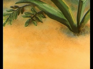 Путешествие муравья - Мультфильм Э.Назаров (1983)