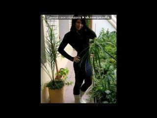 «Только я)))» под музыку Rihanna - Риана и Шон Пол. Picrolla