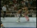 WWE Wrestlemania 7 1991