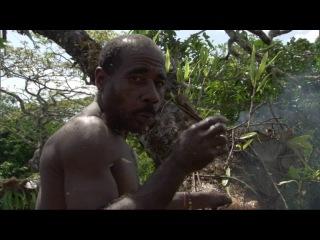 BBC Планета людей BBC Human Planet Серия 4 Джунгли Обитатели деревьев