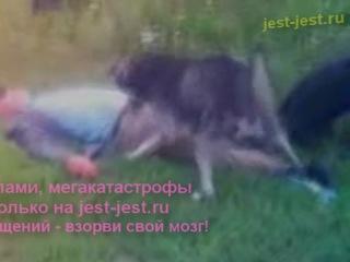 Порево с собакой - зоофилия. Порно