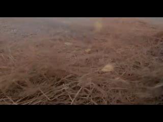 Джет Ли в фильме Кулак легенды. 1994 год.