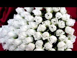 Цветы под музыку А.Брянцев - С Днём рождения, девочка моя. Picrolla