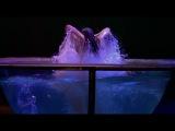 Цирк дю Солей - Сказочный мир (Cirque du Soleil - Worlds Away)