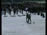 Отдельный Батальон Охраны и Разведки