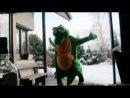 MC Silk Krokodyl