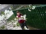 «Я дома!:)))И мои цветы+деревья!:)))» под музыку 7 ART ( Кузя, Алла, Майкл, Таня, Силя ) - Универ (dj Degree MIX). Picrolla