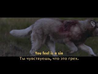 She Wolf (Falling to Pieces) (оригинал David Guetta feat. Sia)....