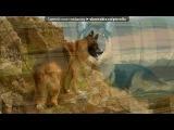Немецкие красавцы под музыку Krec ft. Ассаи - Собака. Picrolla