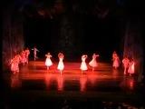 Вальс цветов,Щелкунчик и Мышиный карольАстраханский театр оперы и балета