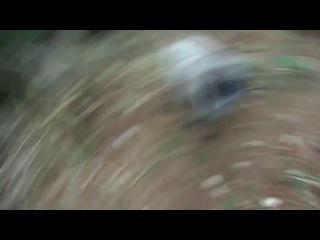 два барана встретились на узкой дороге)