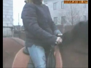 Как правильно сидеть на лошади