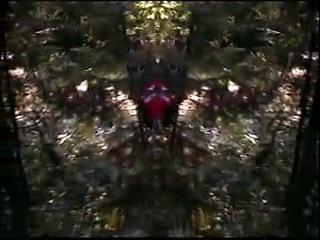 ЧУЖОЙ ЛЕС 2