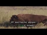Филипп Киркоров - Жестокая Любовь караоке