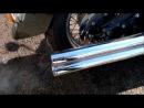 Мой XVS 1100A с Cobra Speedster Longs