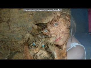 «барсик» под музыку Песня про кота - Ты мой миленький,хороший котик,положу тебе сарделичку я в ротик:))))). Picrolla