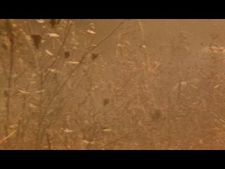 Падение Чёрного ястреба 2 - Зона высадки Ирак / American Soldiers