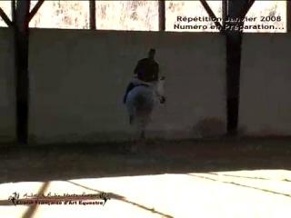 Répétition Audrey HASTA LUEGO et Rey 2éme Partie Spectacle Equestre
