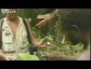 Племя в Папуа-новой Гвинее первый раз увидело белого человека.