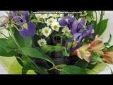 «самая обоятельная бабушка Гала!!)))» под музыку Светлана Лазарева - Мама (самая лучшая песня о МАМЕ). Picrolla