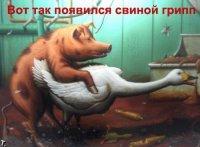 Мохнокрыл Мохнокрылов, 27 мая , Самара, id94547558