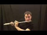 битбокс и флейта