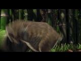 Большое путешествие (2006) все мультфильмы на multikoff.com
