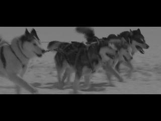 Вырезки из фильма Белый плен Eight Below под песню Hurts - Stay