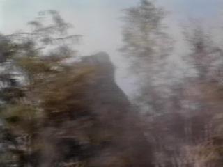 King Kong lebt -