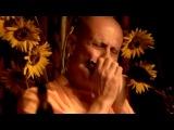 Радханатха Свами играет на гармошке