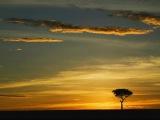 Aki Bergen - Africanism(original mix) THE BEST VERSION EVER