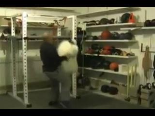 [Силовые в спорте] Майк Замбидис, кикбоксинг, единоборства. Случайные отрывки за последние нескл. лет