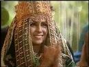 Свадьба Зейна и Жади
