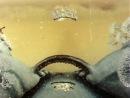 Падал прошлогодний снег (1983)  ♥ Добрые советские мультфильмы ♥