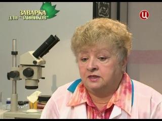 БЕЗ ОБМАНА ЗАВАРКА ДЛЯ ЧАЙНИКОВ 06 05 2013 ДОК ФИЛЬМ