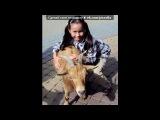 Моя прелесть под музыку Whizzkids feat. Inusa Dawuda - Roumors (digi, digi). Picrolla