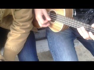 Destroy The Brain - Brutal Zombie Night (ukulele cover)