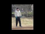 «мои любимые» под музыку Светлана (Алиса) Тарабарова - Счастливая песня. Picrolla