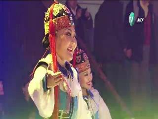 Morin jiliin huumori toglolt-MUSTA Boldbaatar (1)