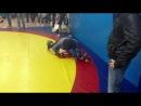 Турнир по любительскому миксфайту в ск Альянс 8 апреля 2012