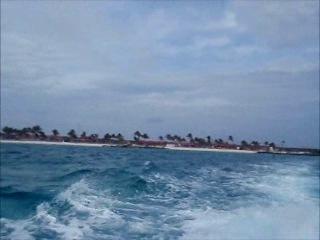 Последний Тендер с острова Принцесс кейс в этом году