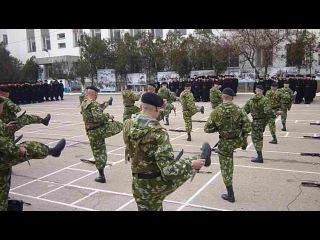 РДР 810 ОбрМП День Морской пехоты Севастополь