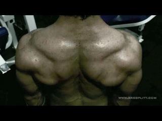 Greg's Workout - Shoulders IV дельты