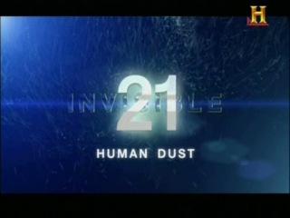 Невидимое / Invisible (Louis Tarantino, Douglas Cohen) [2013, Научно-познавательный, TVRip] Sub Rus